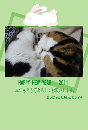 2011nennga_2